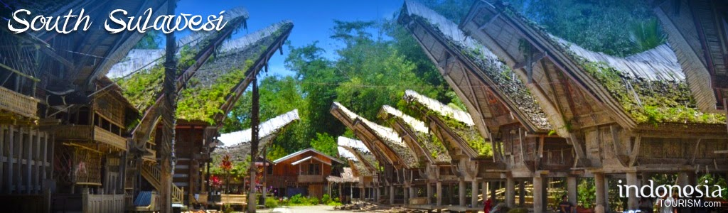 Welcome to Sulawesi~East Indonesia