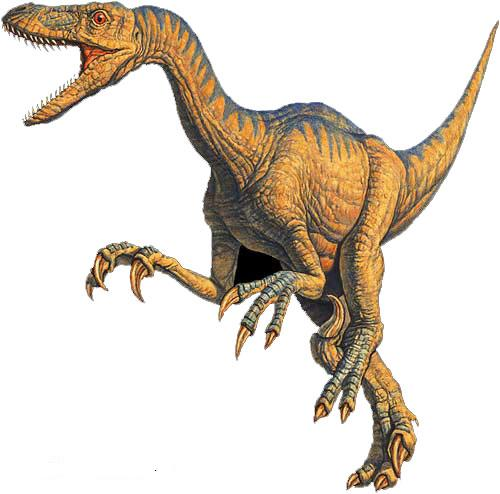 tstVelociraptor_Tucci - The Dinosaurs That Walked The Earth - Science and Research