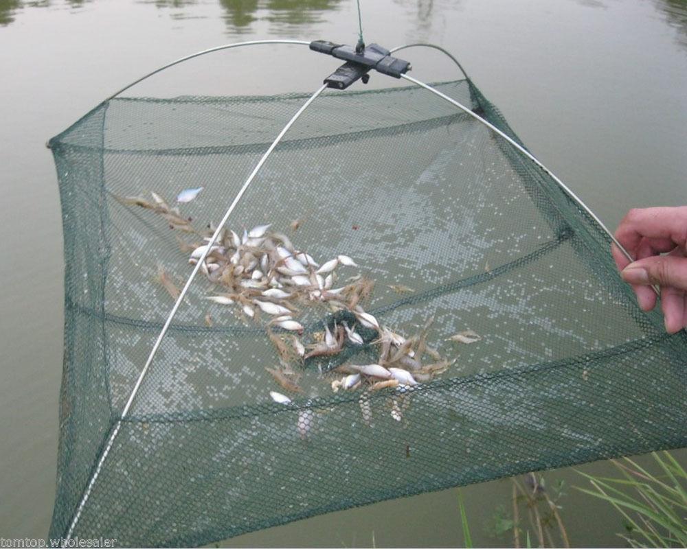 Big trap net small fish smelt eels crab lobster minnows shrimp and crawfish fold