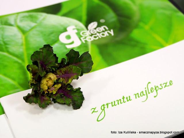 super food , brukselka , jarmuż , krzyżówka , warzywo , samo zdrowie , nowość , kapusta , fit&easy