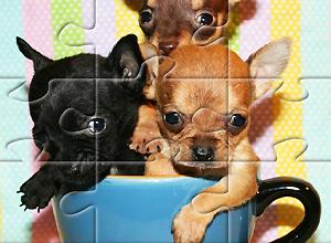 Puzzles de Cachorros