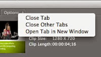 Avid FX (Boris RED) Open Tab in New Window.
