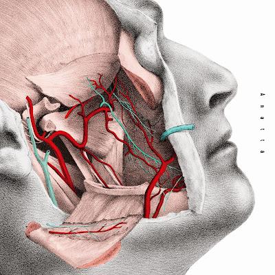 [Album] 如果身體全部開放了 (Anatta) - Easy Shen