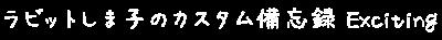 ラビットしま子のカスタム備忘録Exciting