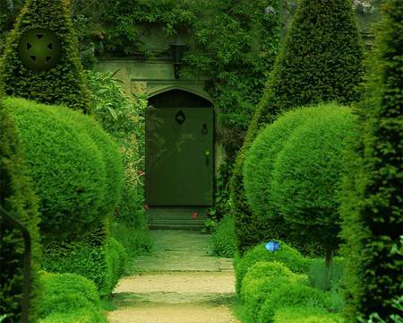 Solucion Backyard Garden Escape