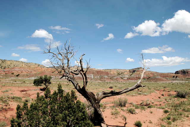 Ghost Ranch Abiquiu New Mexico