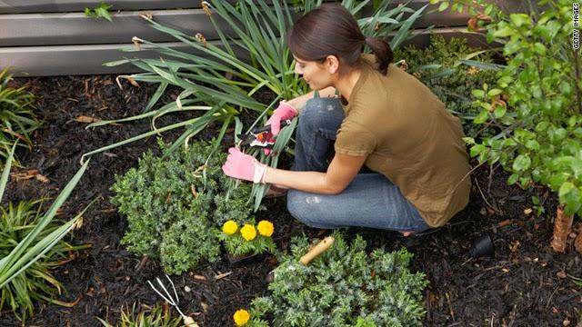 Gardening photos
