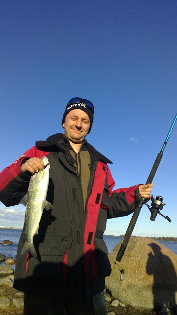 Siika saa keväisin kalastajan suupielet hymyyn.