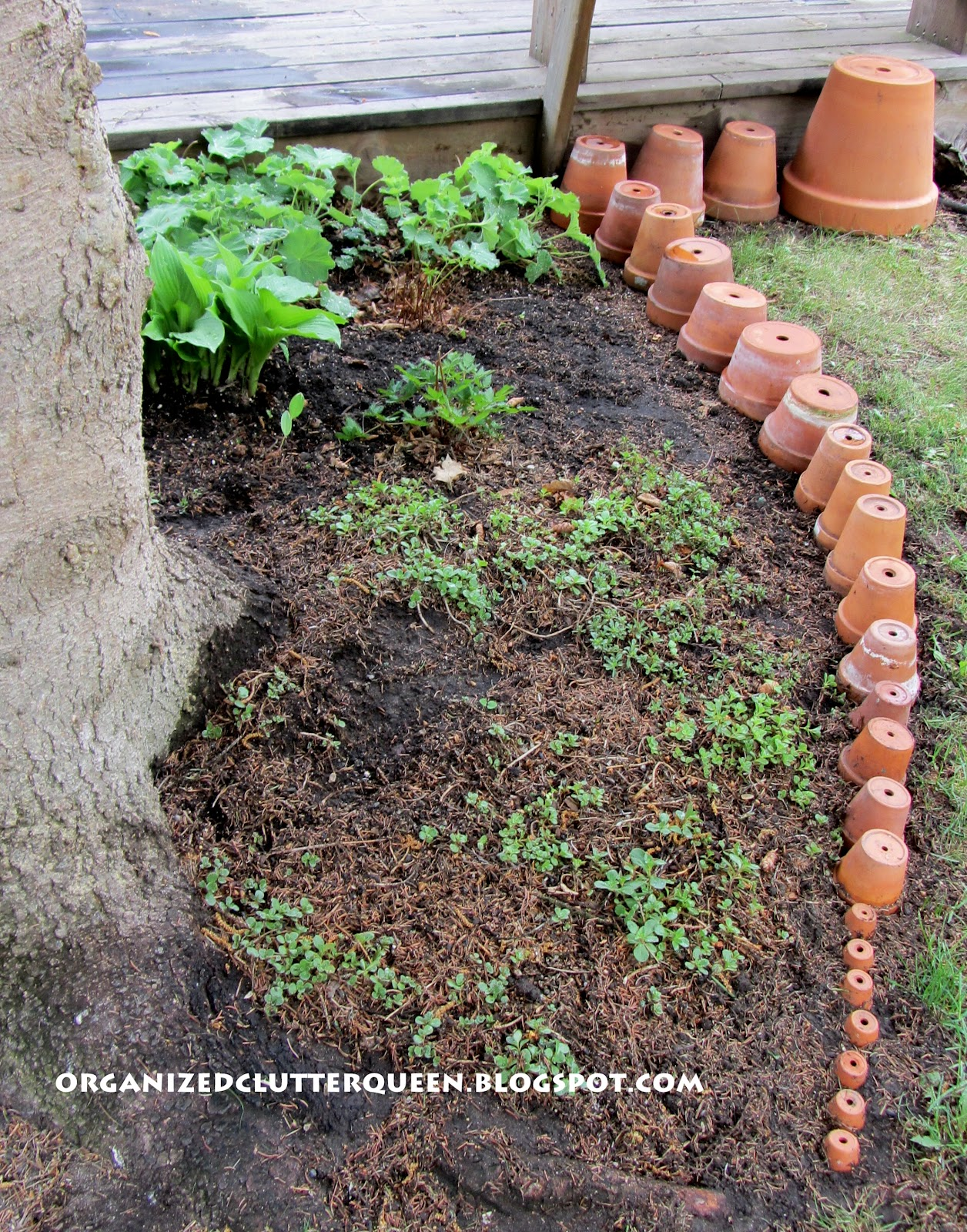 Setting up my terra cotta pot edging organized clutter - Best compost for flower pots solutions within reach ...