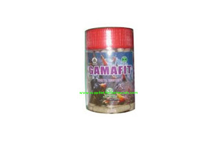 GROSIR Gamafit 5 Botol @ 120 Kapsul (Gamat 100%) 1073 Gamat [Nurusy Syifa]