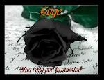 La rosa de Goge.