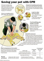 CPR FOR YOUR PETS