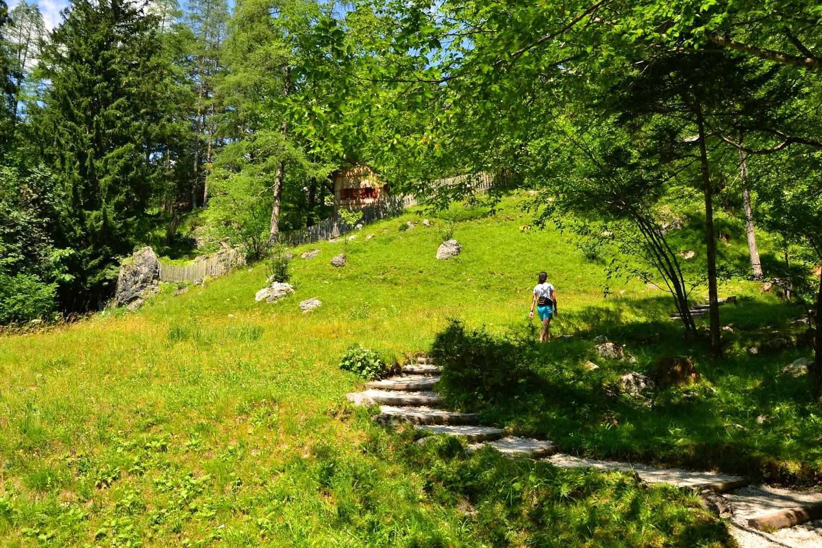 alpine botanical garden slovenia