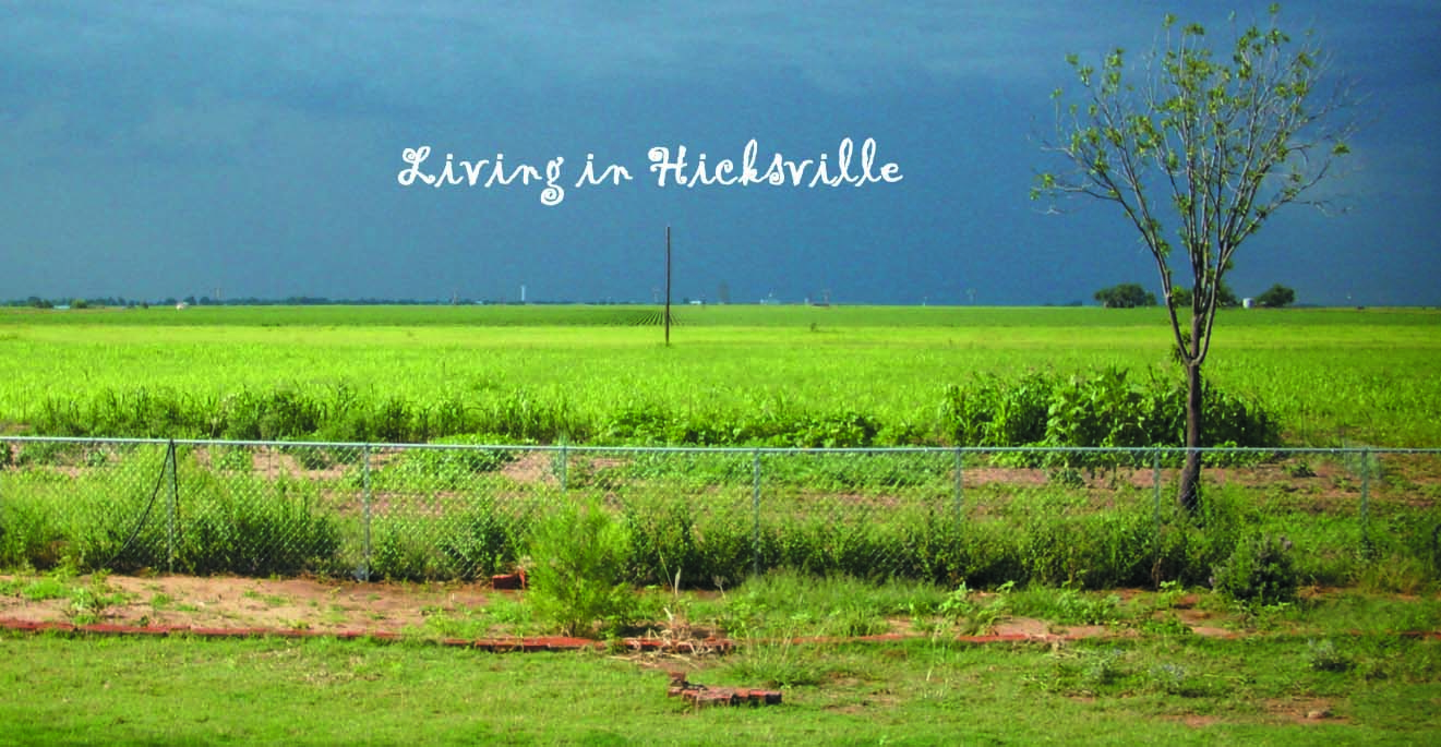 Living in Hicksville, Tx