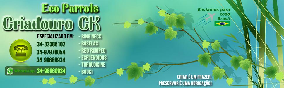 Criadouro CK Eco Parrots