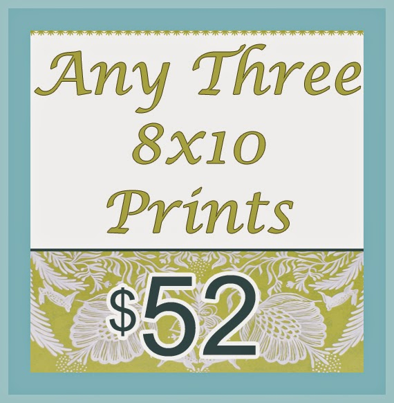 https://www.etsy.com/ca/listing/207851664/any-three-8-x-10-prints-of-your-choosing?ref=shop_home_active_2