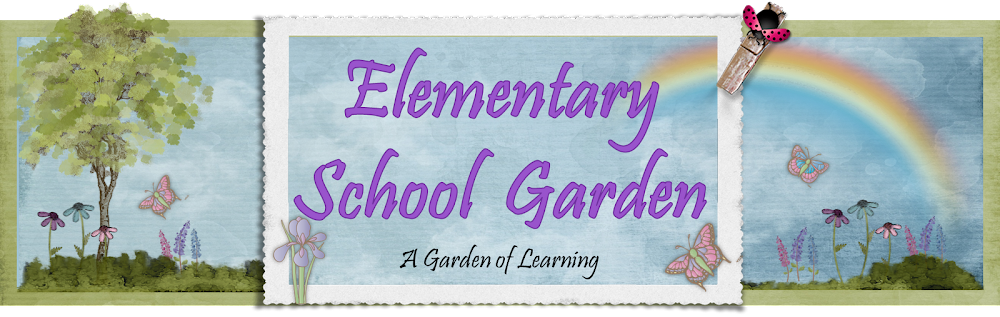 Elementary School Garden