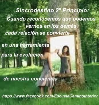 CURSO DE MEDITACION - SINCRODESTINO