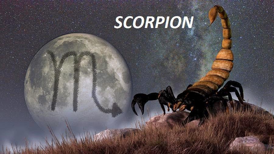 Horoscop ianuarie 2015 - Scorpion