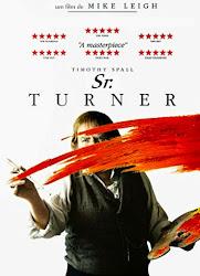 Baixar Filme Sr. Turner (Dual Audio) Online Gratis