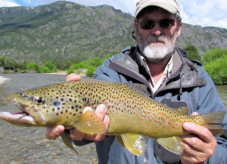 Nice Brown caught in Chile with Streamside Adventures
