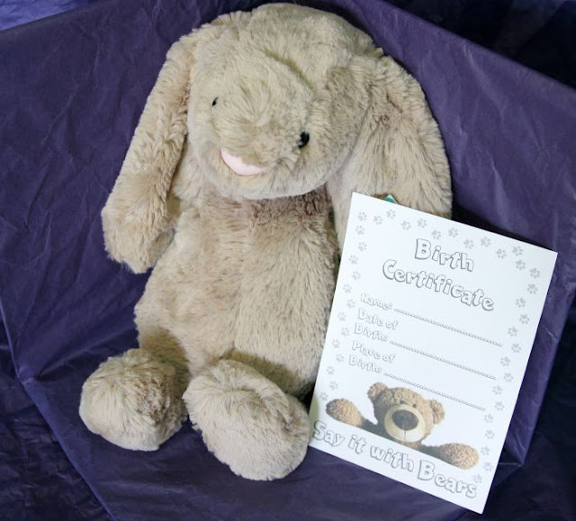 Jellycat Bears from Say It With Bears Review | Morgan's Milieu: Bashful Bunny and his birth certificate.