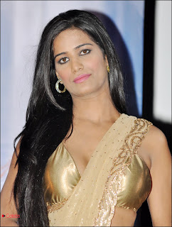 Poonam Pandey Pictures in Saree at Nasha First Look Launch Event  0003.jpg