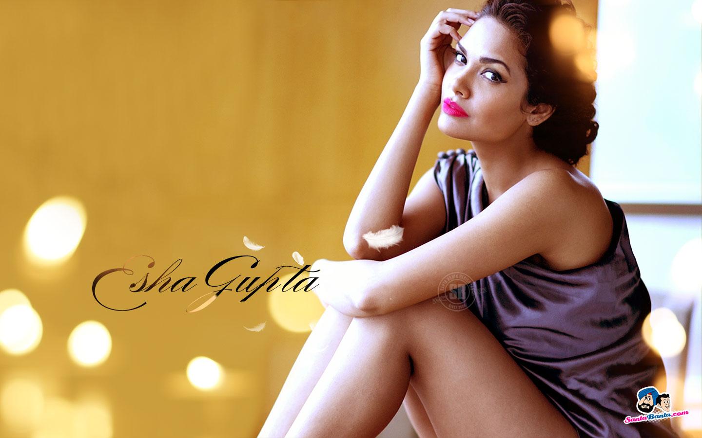 http://2.bp.blogspot.com/-b79b9DERCO0/TxRKH1Edj7I/AAAAAAAAE0I/HisWsVnkyXs/s1600/Esha+Gupta.jpg