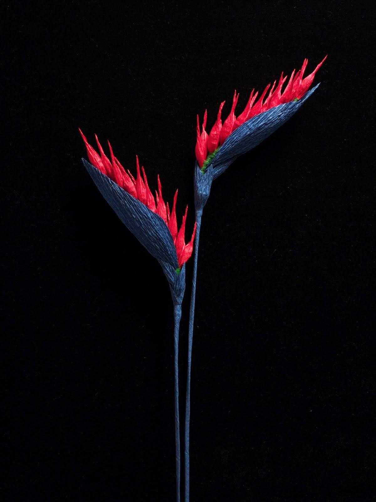bibulkowe kwiaty
