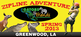 Gators and Friends Zip-lining Adventure