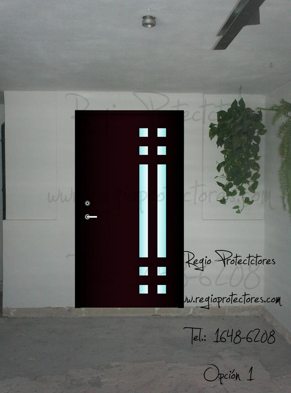 Regio protectores noviembre 2011 for Modelos de puertas principales de fierro