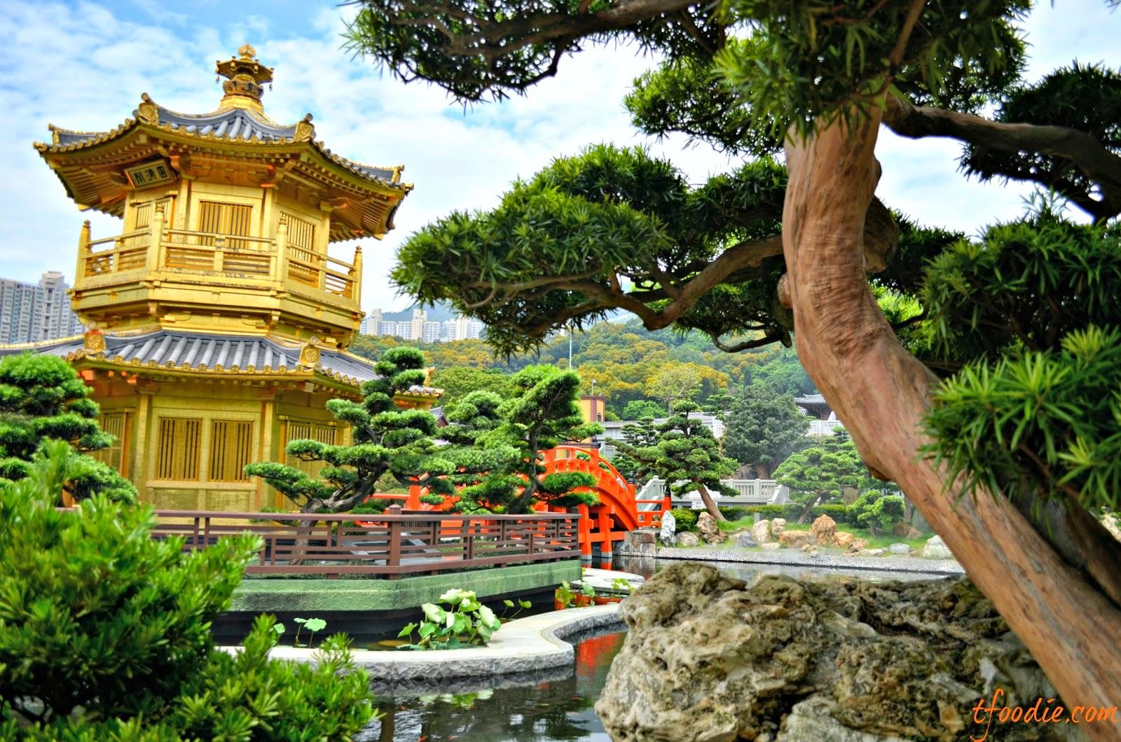 chi lin nunnery nan lian gardens hong kong - Nan Lian Garden