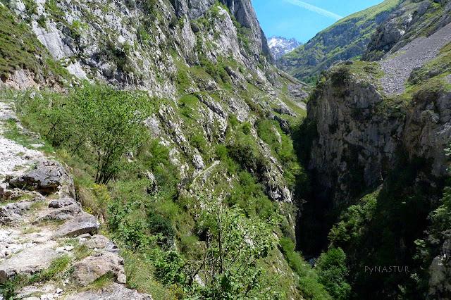 Sendero en el desfiladero con Los Picos de Europa al Fondo