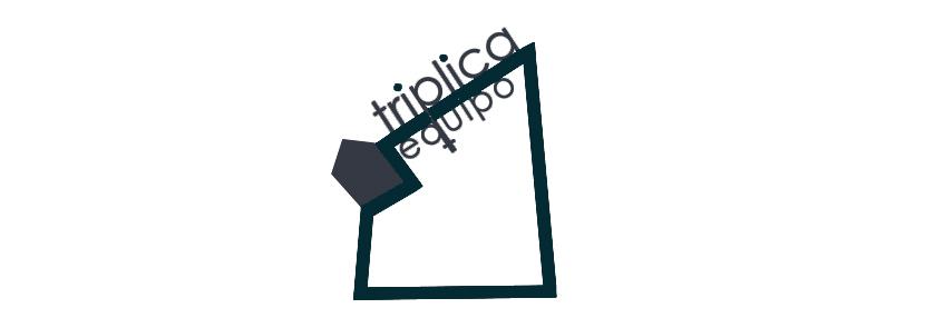 ASOCIACIÓN SOCIOCULTURAL TRIPLICA EQUIPO