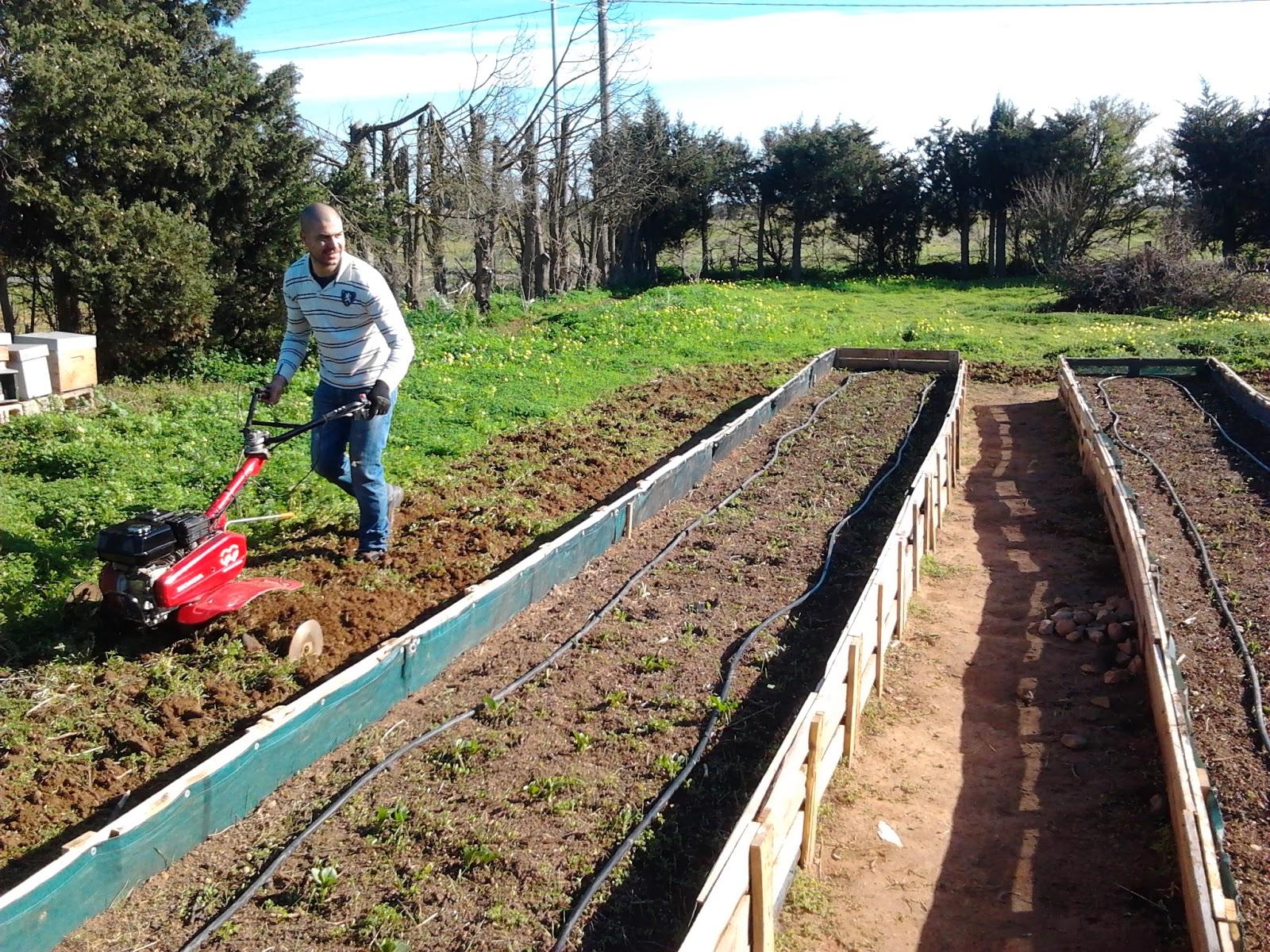 Orto sinergico impianto d 39 irrigazione for Impianto irrigazione orto