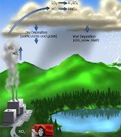 Understanding Acid Rain