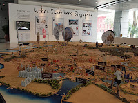 Urban Development Authority Singapore model