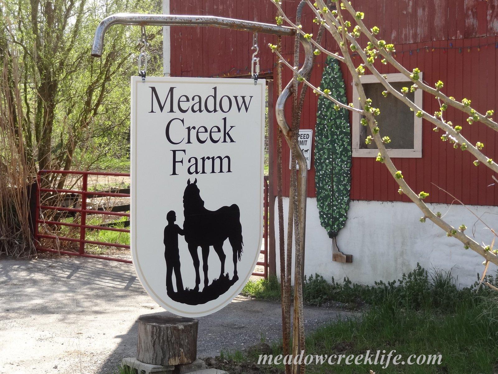 Meadow Creek Farm A New Sign For Meadow Creek Farm Part 2