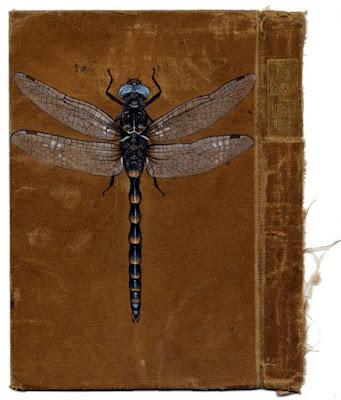libros con insectos pintados