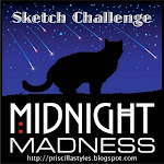 Midnight Madness Past Design Team Member