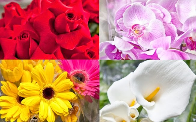 Você sabe por que algumas flores são tão cheirosas a noite ?