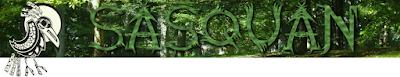 sasquan banner