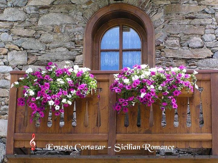 Disfrutaras mirandolas flores de balcones for Balcones con plantas