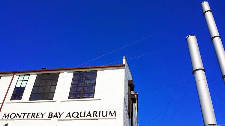 Monterey Bay Aquarium Entrance