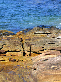 golden manly rocks