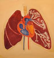 Remediu naturist pentru astm cardiac