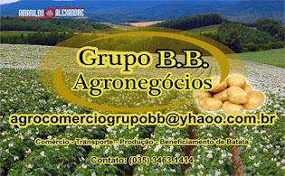 GRUPO BB AGRONEGÓCIOS
