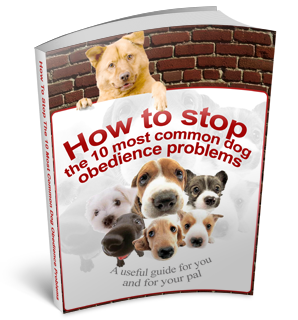 Free Stop 10 Common Dog Obedience Problems eBook