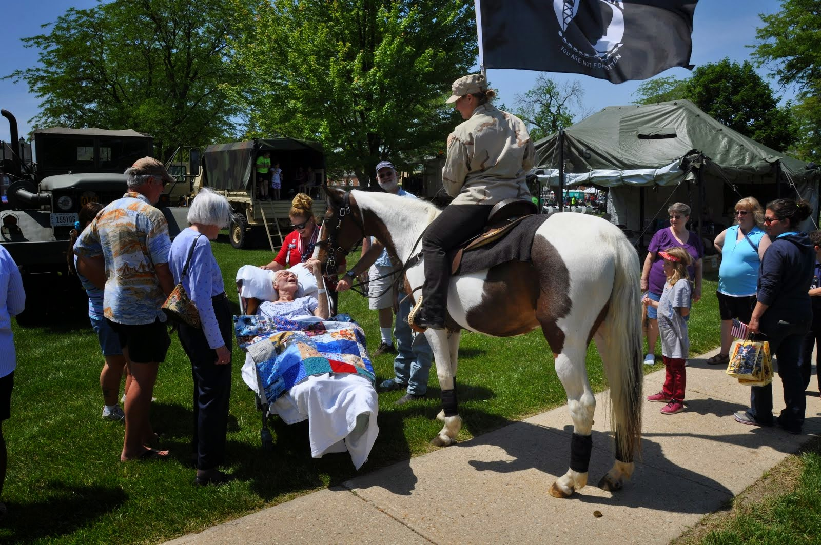 30 year old horse comforts World War II Vet!