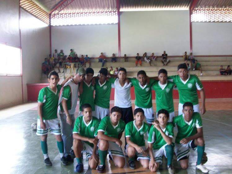 JEMG 2009